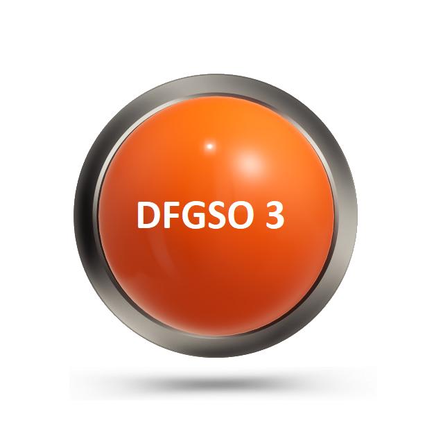 DFGSO 3
